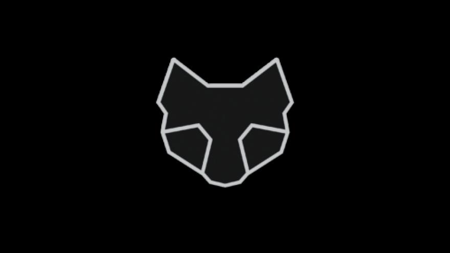 Ehisnõel Cat