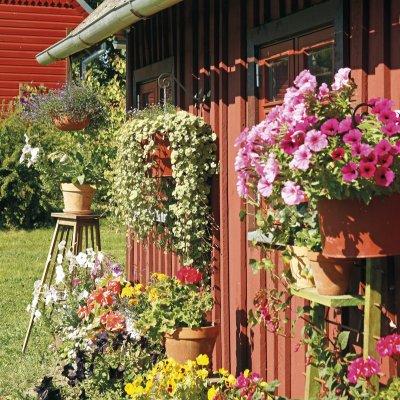Taluelu lille- ja lambamustrid   kodus.ee