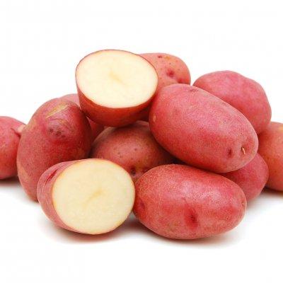 Laura kartul