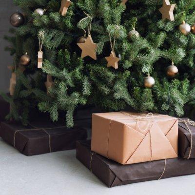 jõulud, kuusk